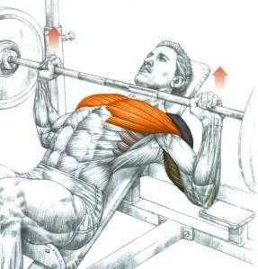 Bench press on an incline